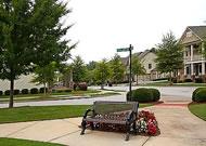 Village Grove