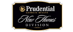 Logo_sm_Prudential Georgia Realty