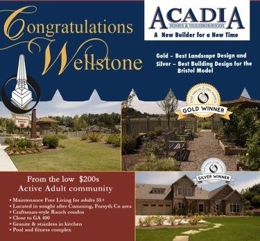 Wellstone1